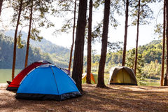 Tents in camping site near lake Royalty Free Stock Photography
