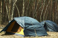 Tents in forest Royalty Free Stock Photo