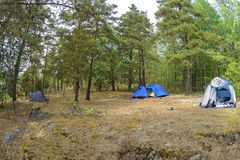 Tents in the forest and green grass. The travel closer to nature by creating temporary accommodation. Nature landscape camping tent in forest on green grass stock photography