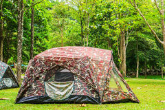 Tents in National Park. Tents with Soldier Pattern in National Park Stock Photography