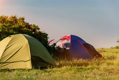 Tents on the nature in the camp at sunset. Tourist tents on the nature in the green grass in the camp in the parking lot at sunset royalty free stock photos