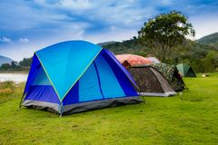 Tents near lake in camping area royalty free stock images