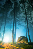 Tents are in the night misty forest. Stock Photography