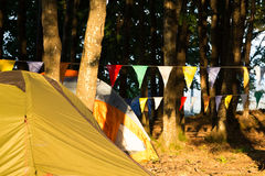 Tents pitched at a campsite amongst trees Stock Photos