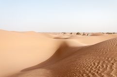 Tents among sand dunes, Draa valley (Morocco) Royalty Free Stock Images