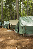 Tents At Summer Camp. A group of five tents in a clearing. This campsite is part of a Boy Scout summer camp royalty free stock images