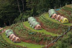 Tents on a terraced hillside royalty free stock image
