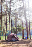 Tents of traveler in camping site near lake Stock Images