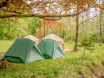 Tents in the woods Stock Photos