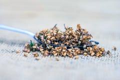 Tenuiflorum Ocimum, ιεροί σπόροι βασιλικού ` s σε ένα κουτάλι σε ένα gunny υπόβαθρο στοκ εικόνα