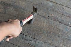 Tenuta del martello a mano su legno Immagine Stock