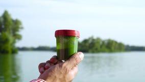 Tenuta della mano del primo piano e contenitore maschii di mescolatura con le alghe verdi alla riva del fiume stock footage