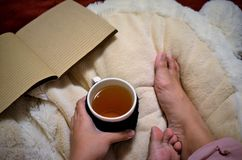 Tenuta della tazza di tè Fotografie Stock