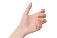Tenuta femminile della mano qualcosa con la palma isolata su bianco immagini stock
