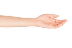 Tenuta femminile vuota della mano della donna Fotografia Stock Libera da Diritti