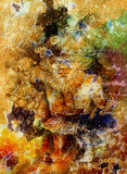 Tenuta nana di fiaba una lanterna magica, fondo del crepitare di colore Fotografia Stock Libera da Diritti