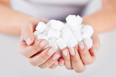 Tenute della donna in mani dei cubi dello zucchero Immagine Stock