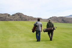 Teo golfiści Obraz Stock