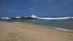 Teodoro Wyrzucać na brzeg †'Isabela, Puerto Rico fotografia royalty free
