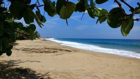 Teodoro Wyrzucać na brzeg †'Isabela, Puerto Rico obrazy stock