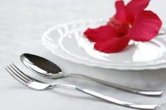 A teoria da alimentação sadia. Imagens de Stock
