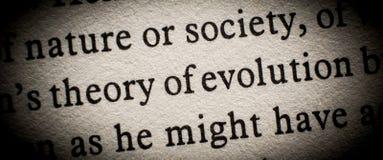 Teoria dell'evoluzione fotografia stock libera da diritti