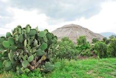 teotihuacan金字塔的星期日 免版税库存图片