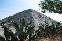 Teotihuacan pyramid of the Sun stock photo