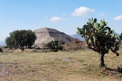 teotihuacan pyramidsun Arkivbilder