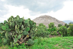 Teotihuacan, sun pyramid. Aztec ruin, Mexico Royalty Free Stock Images
