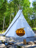 Tepee in the Forest. A tepee set up in the forest Stock Images