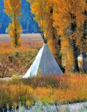 Tepee setup in the Grand Teton National Park in the fall. With the cottonwood trees turning yellow Stock Images