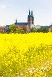 Tepla Tjeckien Fotografering för Bildbyråer