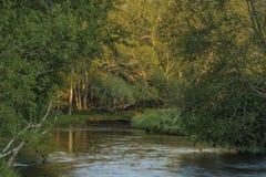 Tepla Vltava rzeka blisko Soumarsky Najwięcej wioski zdjęcia stock
