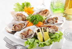 Teppanyaki oysters. Delicious teppanyaki oysters, shallow depth of field Royalty Free Stock Photography