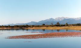 Teppe rosse jezioro w Corsica zdjęcia royalty free