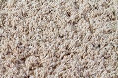 Teppich Stockbilder