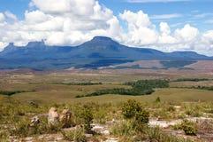 Tepui in Gran Sabana Stock Afbeeldingen