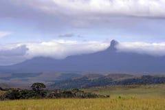 Tepuy gedrapeerd in Wolken, La Gran Sabana, Venezuela Royalty-vrije Stock Afbeelding