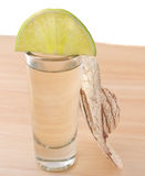 tequila ασβέστη Στοκ φωτογραφίες με δικαίωμα ελεύθερης χρήσης