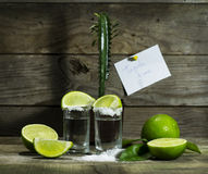 Tequila с известкой и солью Стоковая Фотография RF
