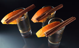 Tequila. With orange and cinnamon on a glass table Stock Photography