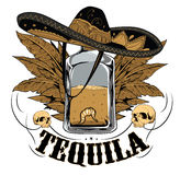 Tequila Fotografia de Stock