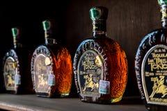 tequila image libre de droits