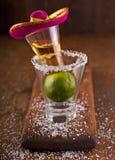 tequila fotografia de stock royalty free