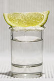 tequila Стоковые Изображения RF