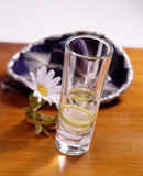 Tequila. A glass with tequila and lemonin front of a mexican hat Royalty Free Stock Photos