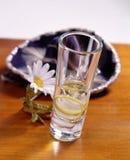 Tequila Lizenzfreie Stockfotos