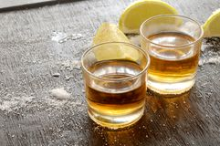 Tequila agave destilled liquor from mexico Royalty Free Stock Images
