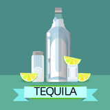 Tequila Bottle Glass With Lemon Lime Salt Alcohol Drink Icon Flat Stock Photography